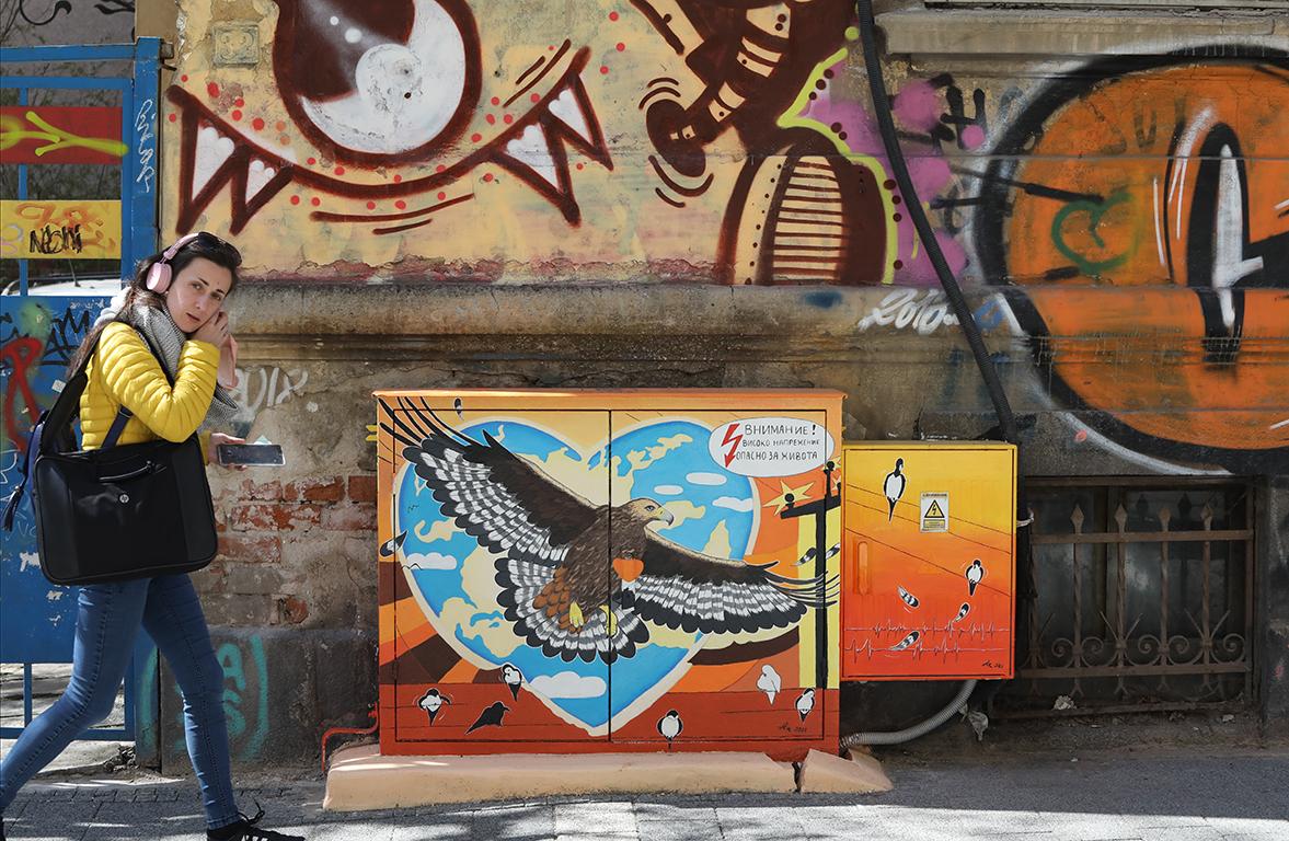 <p>Софийската улица &bdquo;Иван Вазов&ldquo; посреща пролетта по-красива и цветна, заради това, че две от старите електроразпределителни касети на тротоарите й бяха професионално изрисувани с трайни акрилни бои от художничката Анелия Александрова - Ая</p>