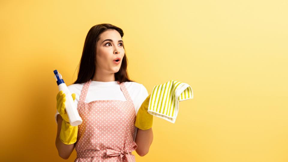 домакиня чистене