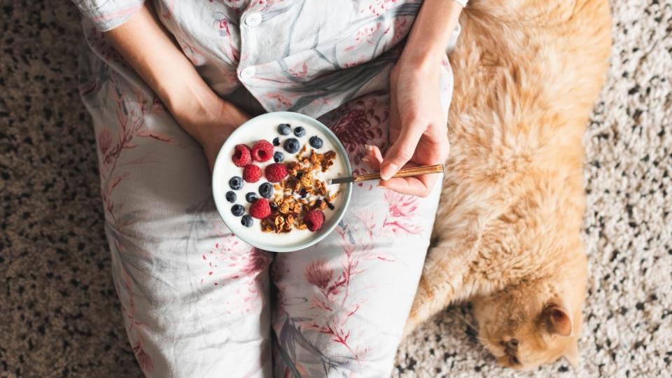 дневен закуска жена котка