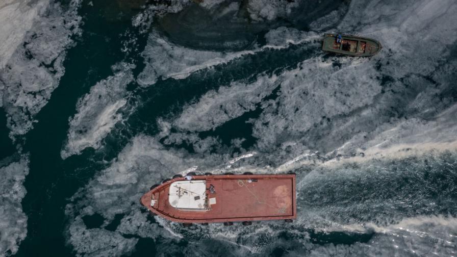<p>&quot;Морски сополи&quot;: каква е тази слуз край Мраморно море&nbsp;</p>