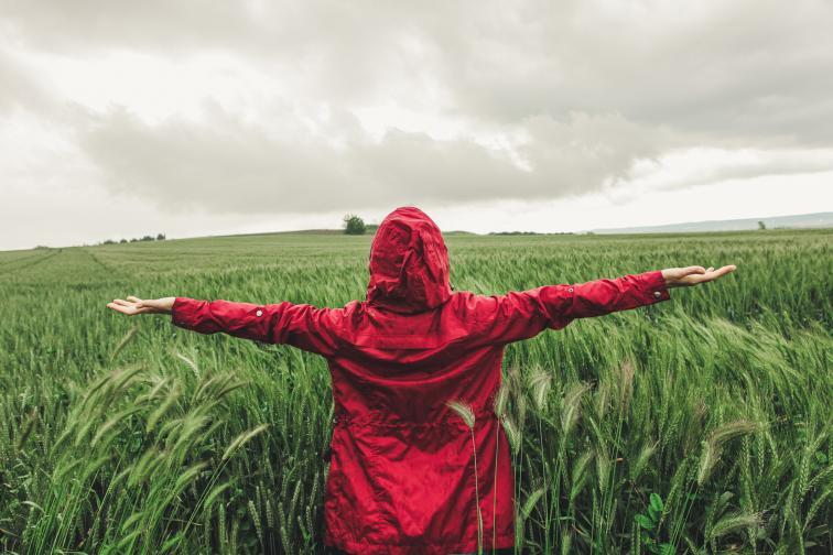 жена зелено поле буря