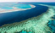 ЮНЕСКО иска Големият бариерен риф да бъде обявен за застрашен, но Австралия възразява