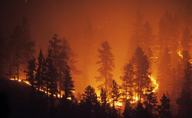 Пожарите в страната - военни се включват в гасенето