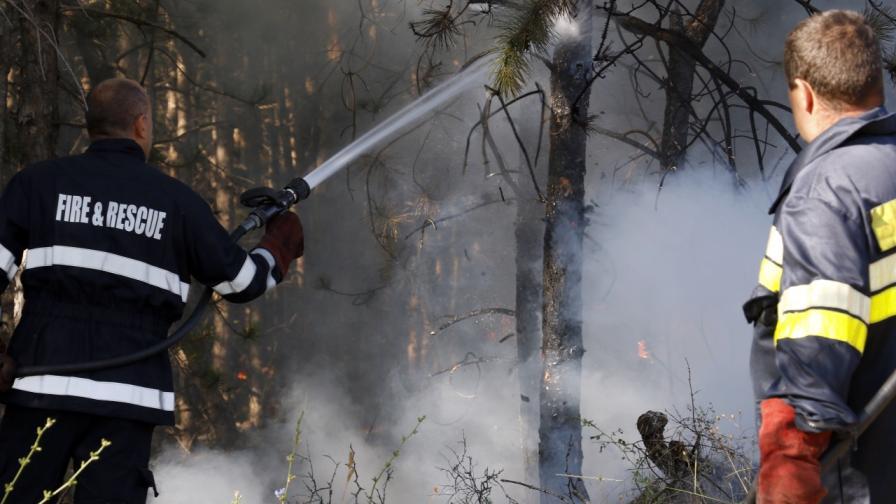<p>Пожарът в Сакар планина е овладян</p>