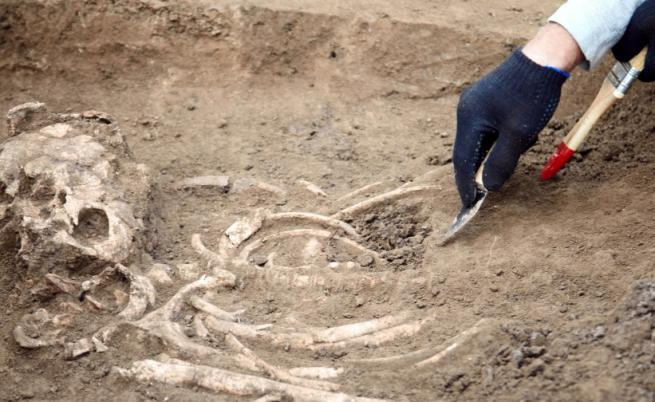Разкриха неподозирани факти за неандерталците