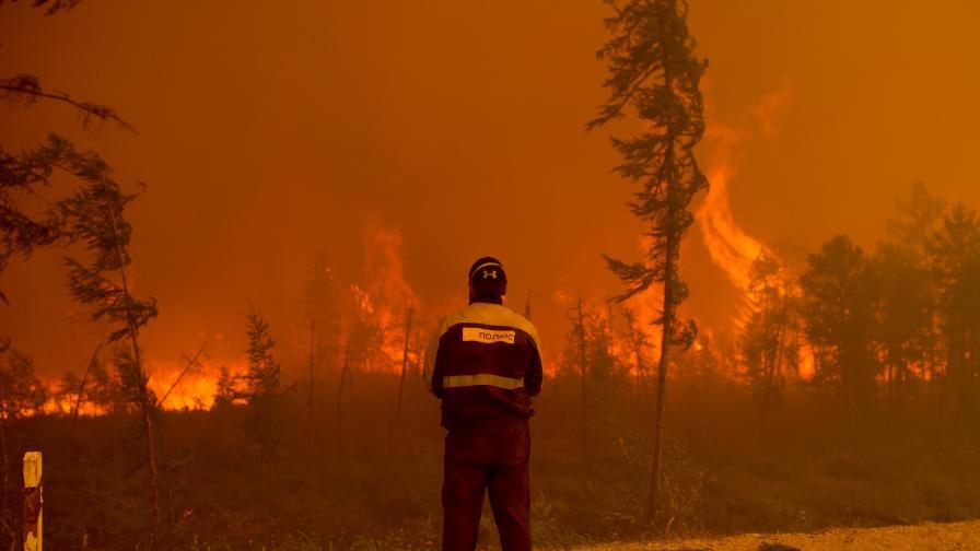 Димът от пожарите в Сибир достигна Северния полюс