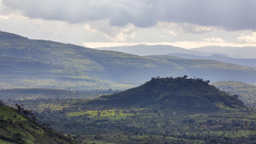 Гвинея, Западна Африка
