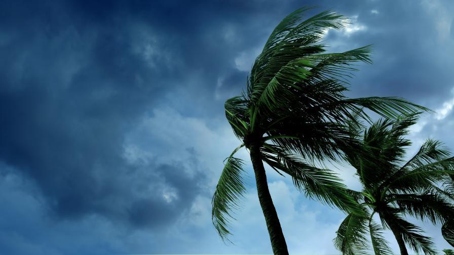 <p>Тропическата буря &quot;Айда&quot; се засили до ураган</p>