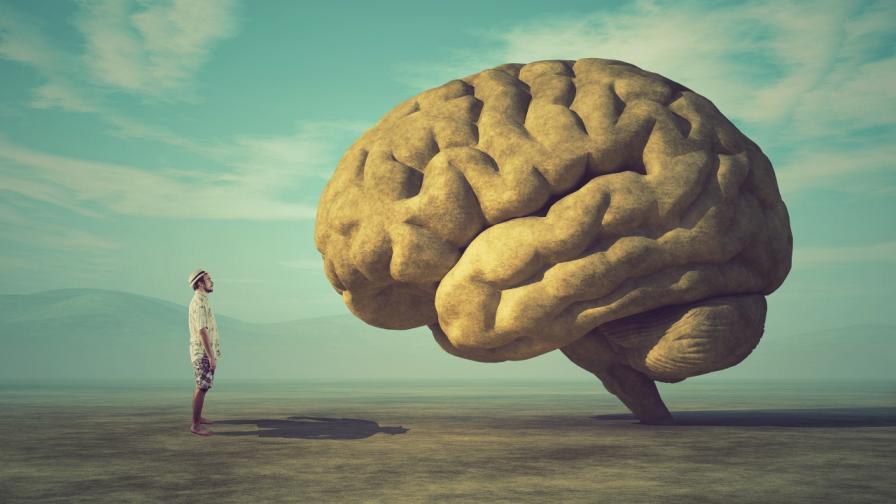 <p>5 сигурни признака, че сте навредили на мозъка си</p>