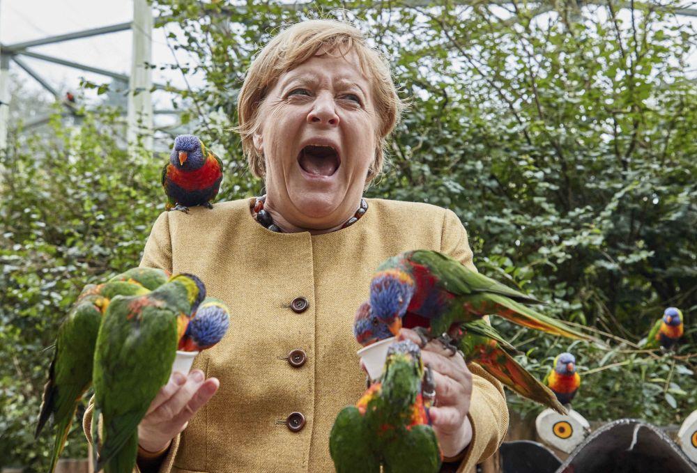 40 снимки, които са направени в точния момент и показват канцлера на Германия Ангела Меркел в различна светлина.