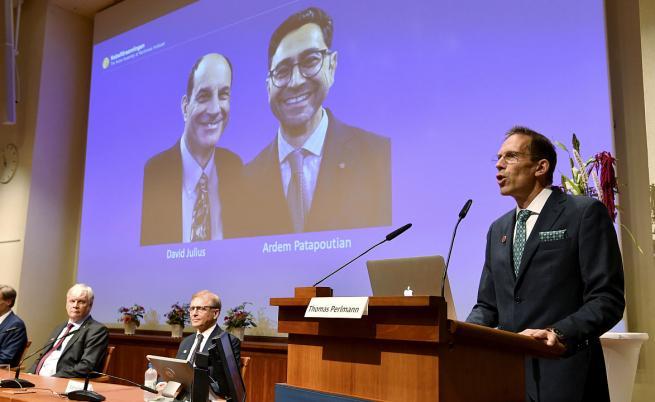 Нобелова награда за откривателите на рецептори за температура и допир