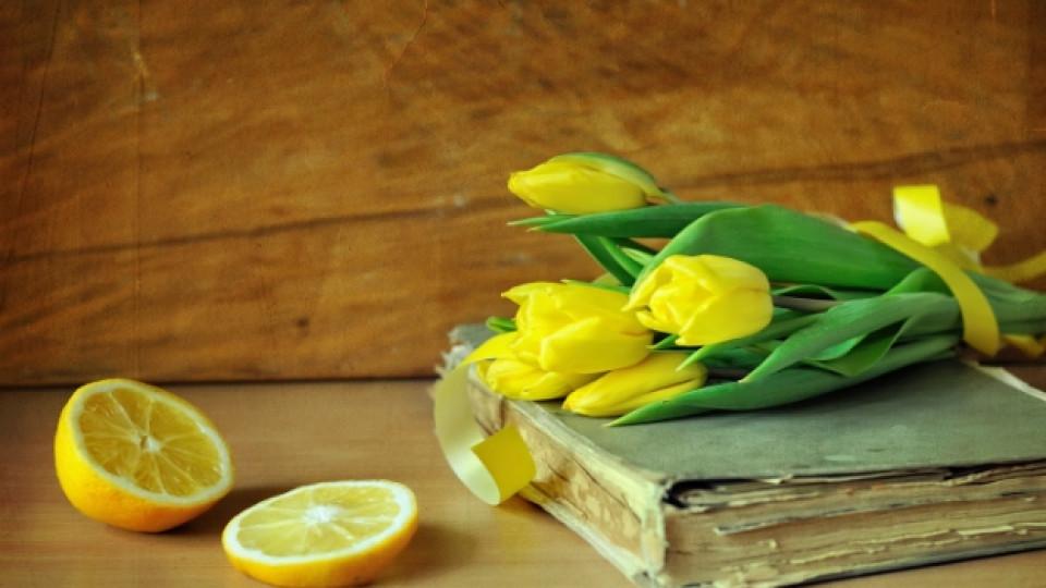 Да поканим пролетта още сега