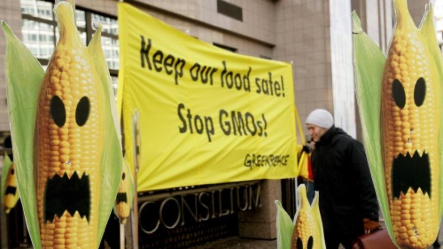 Природозащитниците от Green peace често организират протести около сградата та ЕК в Брюксел срещу генно модицифицираните семена и храни