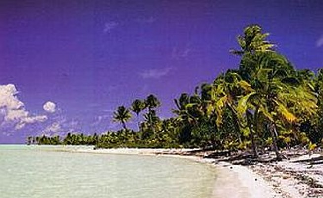 Строят хотел върху острова на Брандо