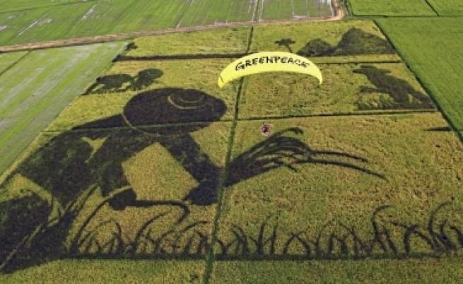ГЕРБ пак размисли: Иска мораториум на ГМО