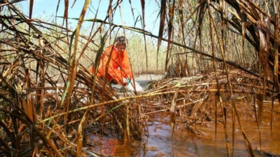 Петролният разлив стигна до Луизиана