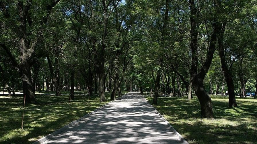 Кът от парка на Военната академия