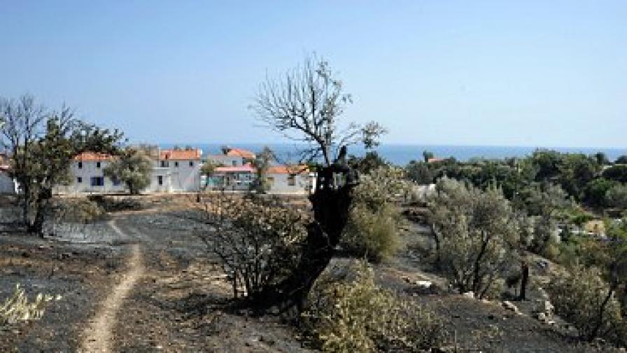 Българин запалил 16 пожара в Гърция