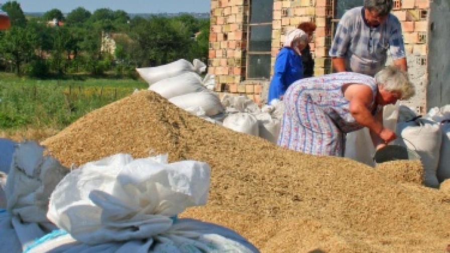 Антимафиоти разследват измама с европари за земеделие