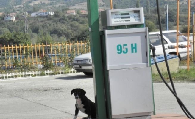 НАП вдига мерника на бензиностанциите