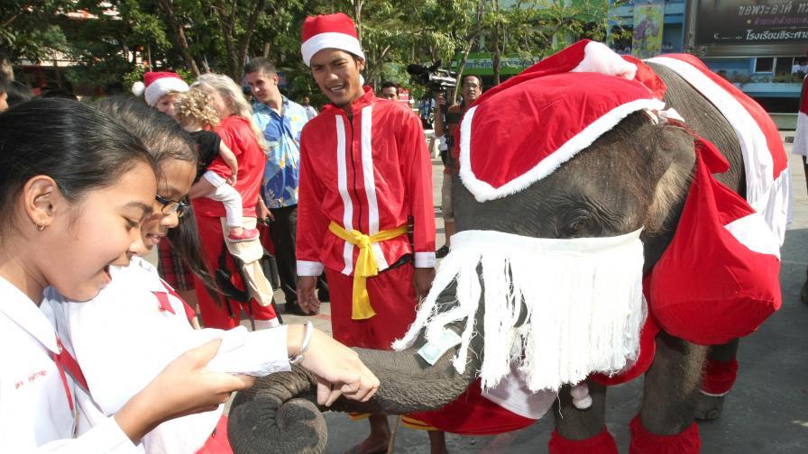 Дядо Коледа слон в Индия радва децата