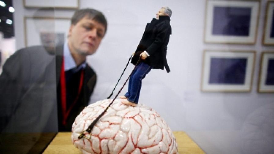 Съвременните хора - по-ниски и с по-малки мозъци