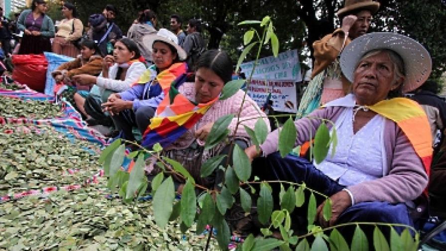 Листата от кока са лек стимулант с висока религиозна и социална стойност в Андите
