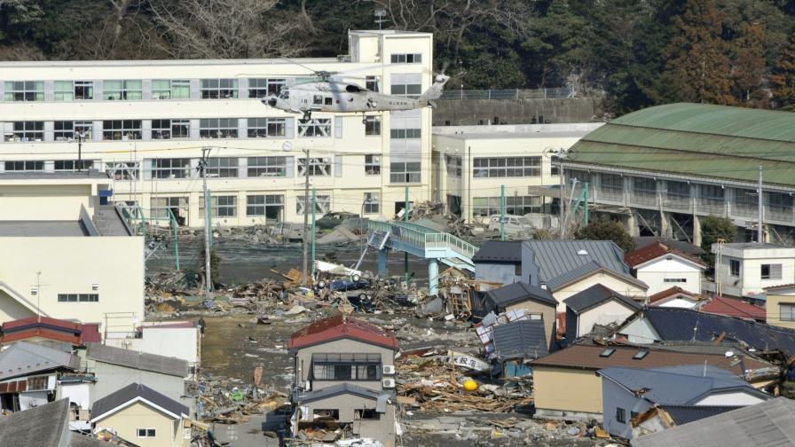 Военни отряди ще се борят с мухите в Япония