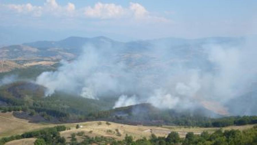 При пожара изгоряха 500 дка смесени гори и треви