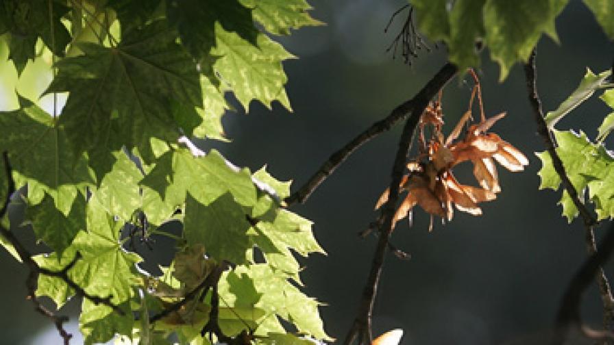 Есента вече е тук