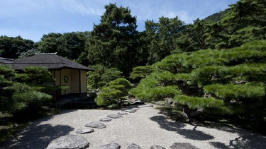 Япония раздава безплатни самолетни билети на туристи