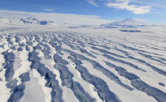 Учените ни ще изследват влиянието на климатичните промени върху обитателите на Антарктида