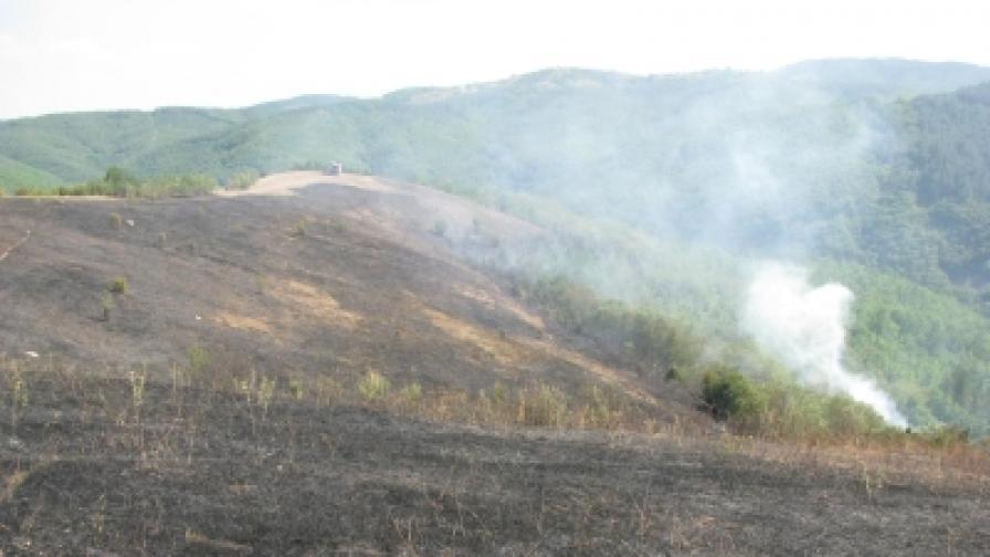 Пожарът в Пирин е потушен
