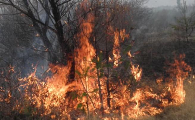 Големи пожари горят на три места в България