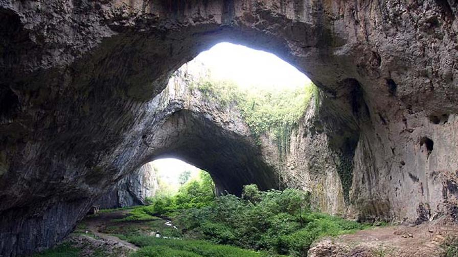 След снимките: Мъртви прилепи в Деветашката пещера