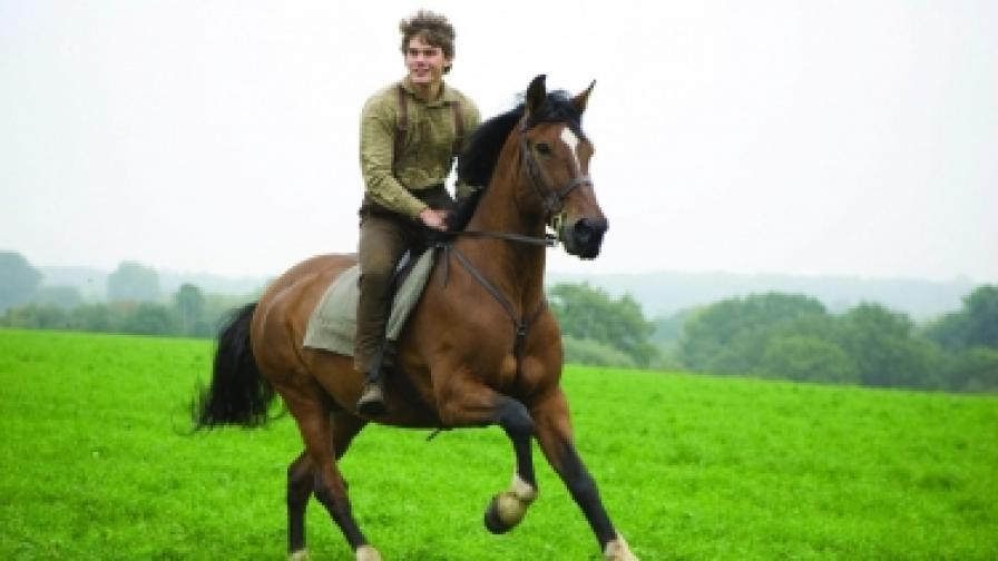 """""""Боен кон"""" (War Horse), реж. Стивън Спилбърг"""