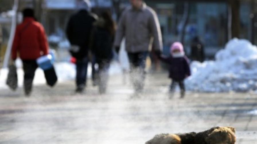 Румънците намалели с 2,3 млн. за 10 години