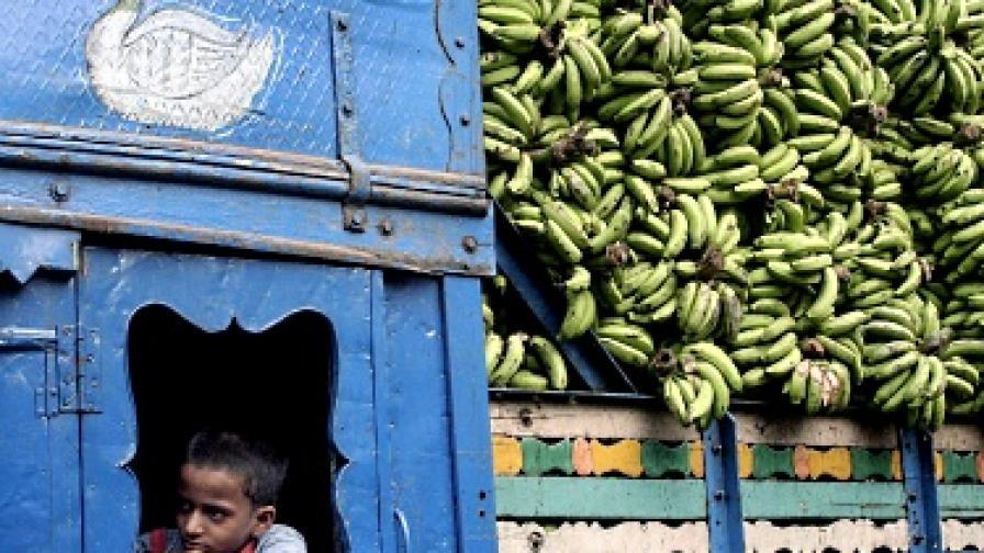 Боядисват в синьо индийски град