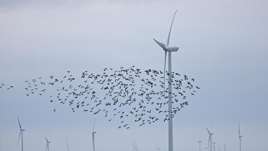 Нов скандал около ветропарк - край Дуранкулашко езеро