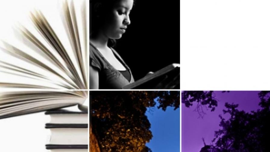 """Нощта на четенето е в културните центрове на Чехия, Полша, Унгария, Франция и университетския театър """"Алма Алтер"""""""
