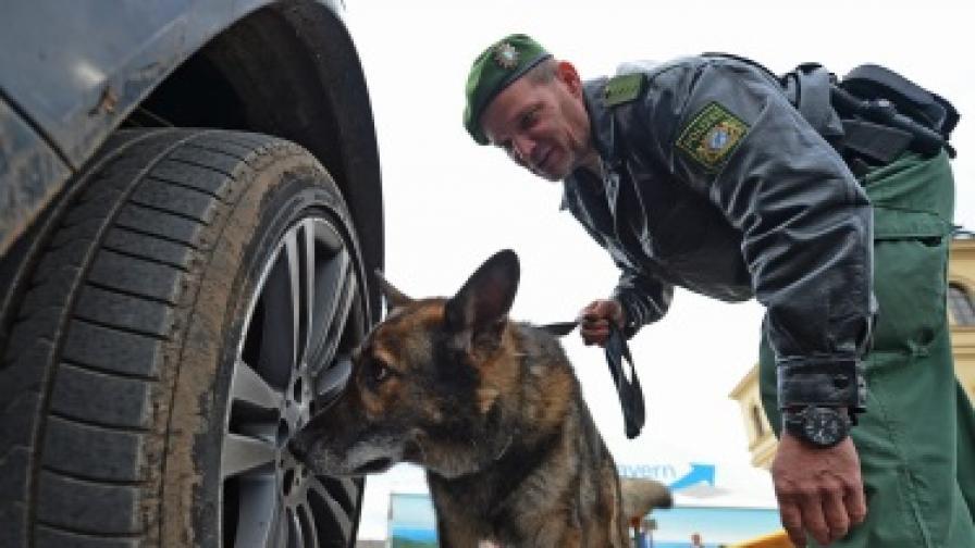 Полицейско куче нахапа шест деца в Германия