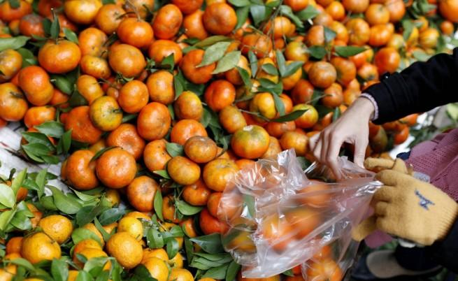 Средиземноморската диета намалява риска от сърдечни болести