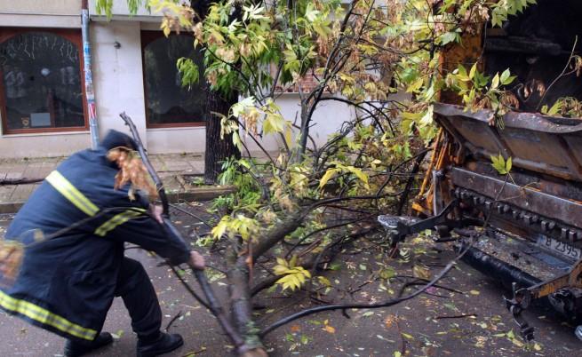 Бедствено положение и една загинала от вятъра в Габрово