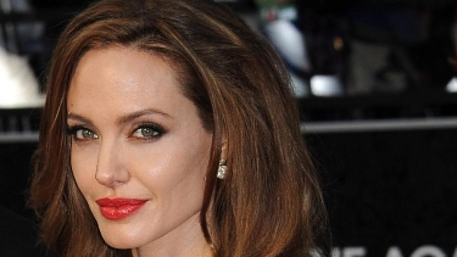 """Джоли спечели съдебен процес за авторство на """"В страната на кръв и мед"""""""