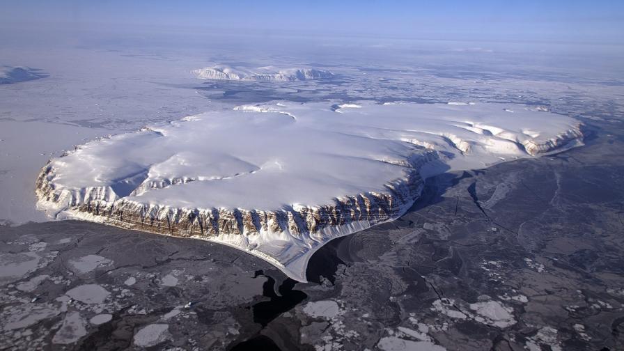 """""""Съживиха"""" замръзнали растения на 400 години"""