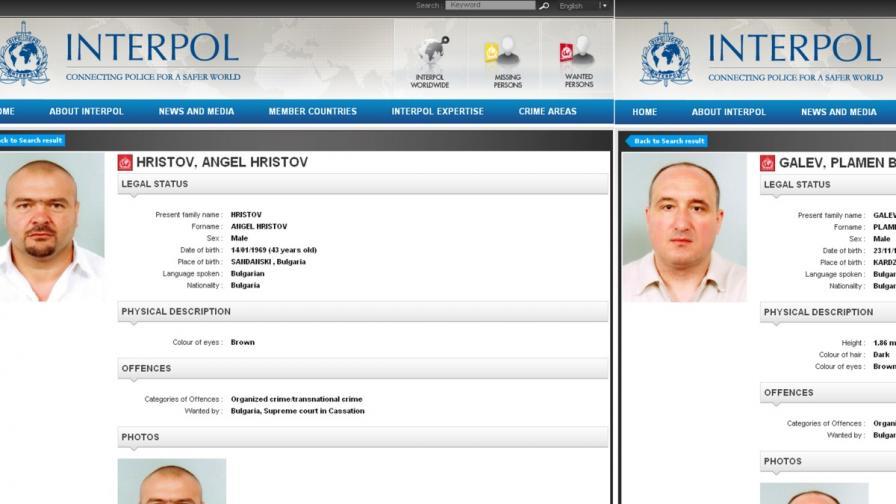 8 адвокати бранят имущество на братя Галеви за над 4 млн. лв.