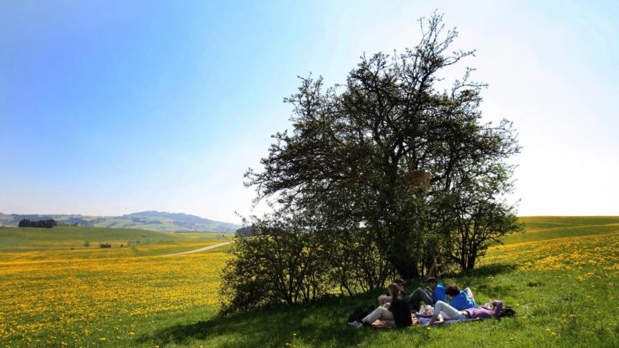 Състезание по мързел в Черна гора
