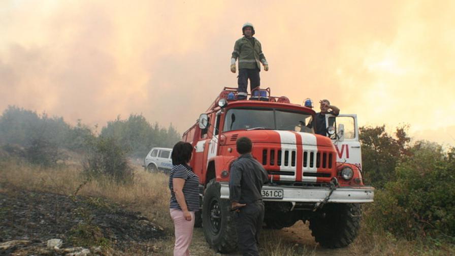 Пожар избухна в борова гора край с. Змейово