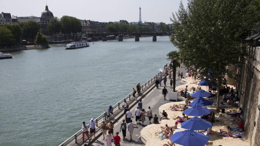 Уловиха опасната риба паку и в река Сена