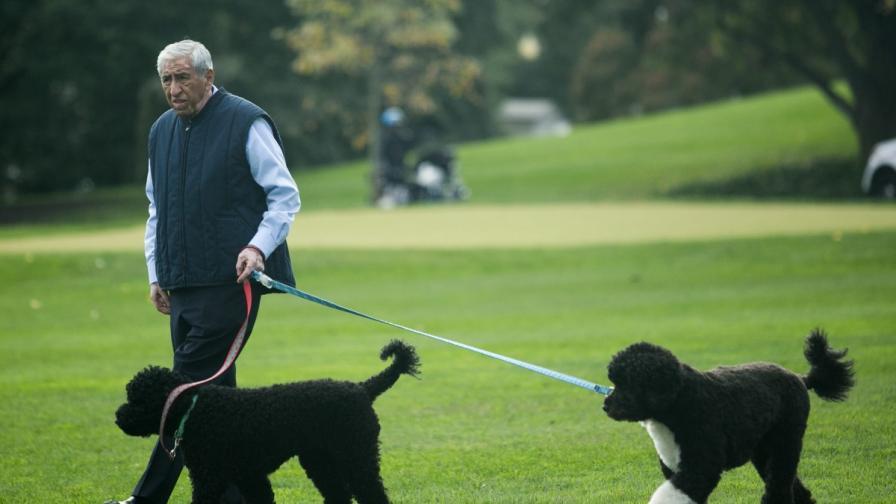 Едно от кучетата на Обама нахапа момиче по лицето